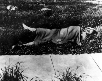 black-dahlia-murder-scene-credit-herald-examiner-collection-los-angeles-public-library